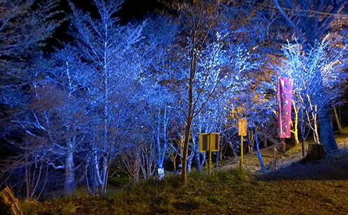 金比羅山-ライトアップ